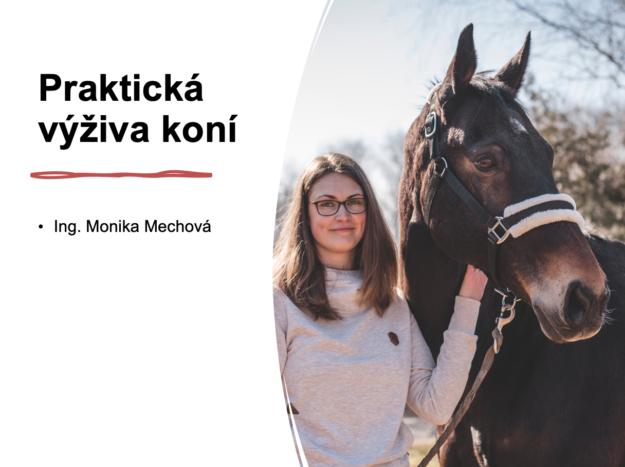 přednáška krmení koní
